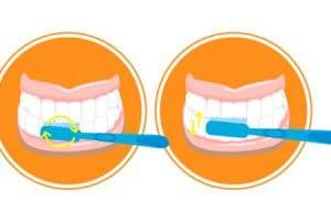 Cómo cepillarte los dientes con la técnica circular