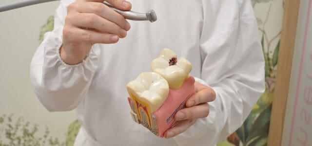 Endodoncia precio