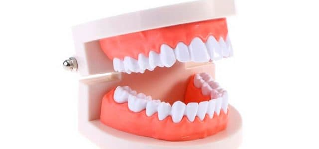 Dentadura permanente completa